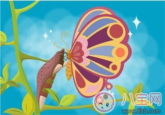 妈妈睡前一个好故事:虫、蛹和蝶