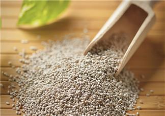 哺乳期可以吃奇亚籽减肥吗  奇亚籽的减肥功效