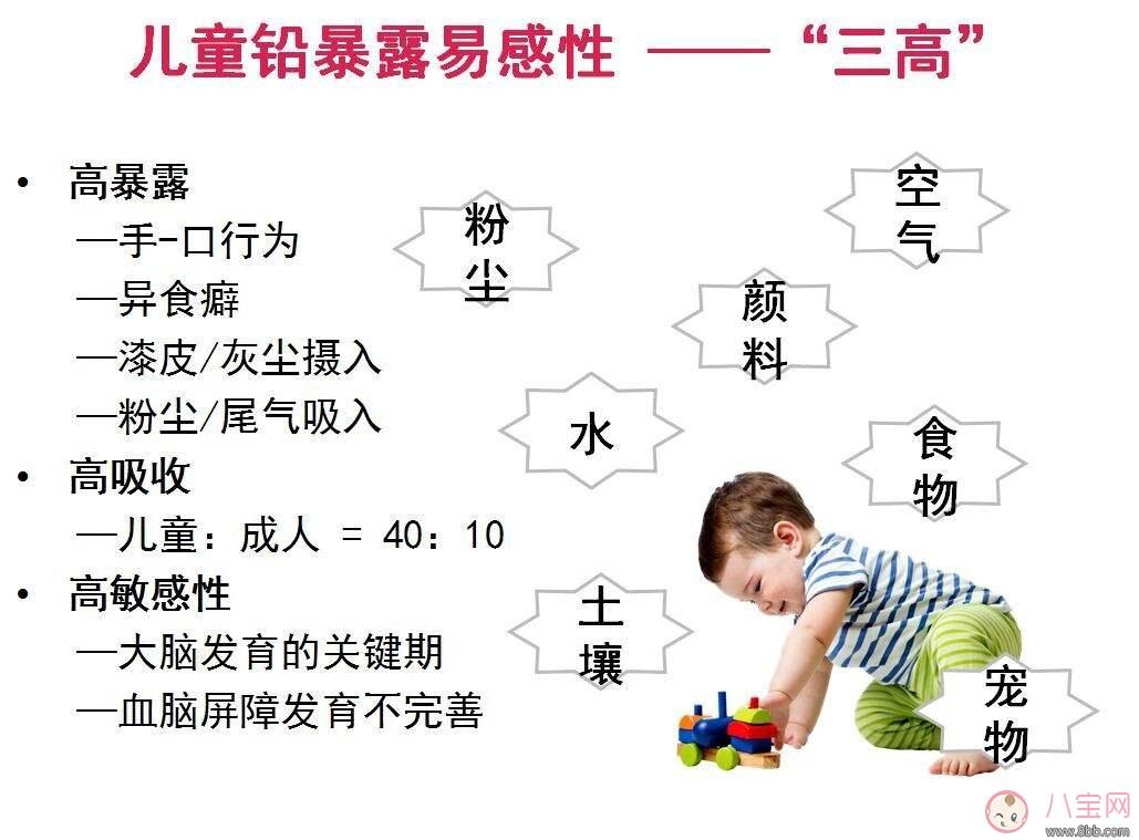 儿童铅中毒的危害  如何预防儿童铅中毒