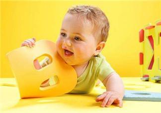 宝宝需要的营养素  如何补充所需营养素