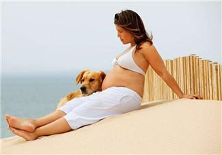 孕妇运动如何避免伤到腹部 孕妇运动注意事项