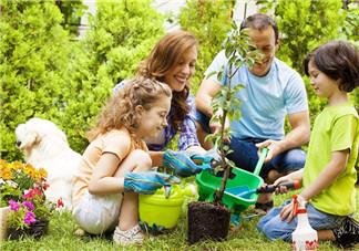 过敏会引发儿童气喘吗 如何改善居家环境预防宝宝气喘