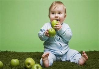 秋季宝宝吃什么食物比较滋补 适合宝宝秋天吃的食物推荐