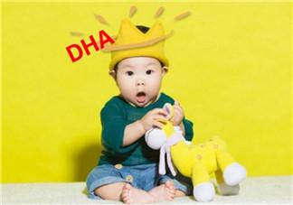 宝宝吃哪些食物可以补充DHA 哪种食用油能给宝宝补充更多DHA