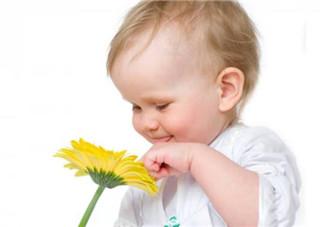2岁宝宝到处捡东西吃怎么办 2岁宝宝到处捡东西习惯怎么改掉