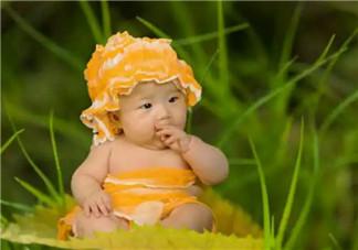 宝宝1岁左右手的敏感期家长怎么做 宝宝手的敏感期撕纸好不好