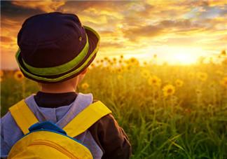 专家回答我从哪里来的解释 怎么巧妙回答孩子我从哪来