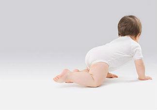 人工授精和试管婴儿的区别在哪里 人工授精和试管婴儿哪个成功率高
