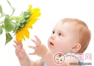 寶寶吃阿莫西林過敏癥狀 2歲寶寶服用阿莫西林過敏怎么辦