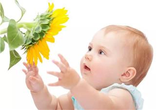 宝宝春天脸上起红疙瘩怎么回事 宝宝起红疙瘩是过敏吗