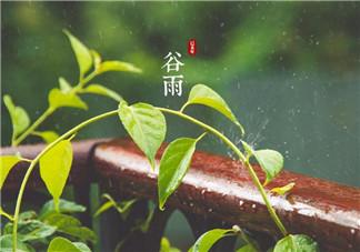 2018谷雨节气说说朋友圈 谷雨节气祝福语经典说说