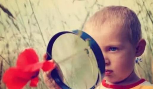 怎么培养宝宝的观察能力 培养宝宝观察能力的方法