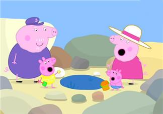 小猪佩奇不差钱是什么意思 小猪佩奇不差钱的原因是什么