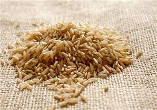 糙米茶可以减肥吗 糙米用热水温水还是凉水泡好吃