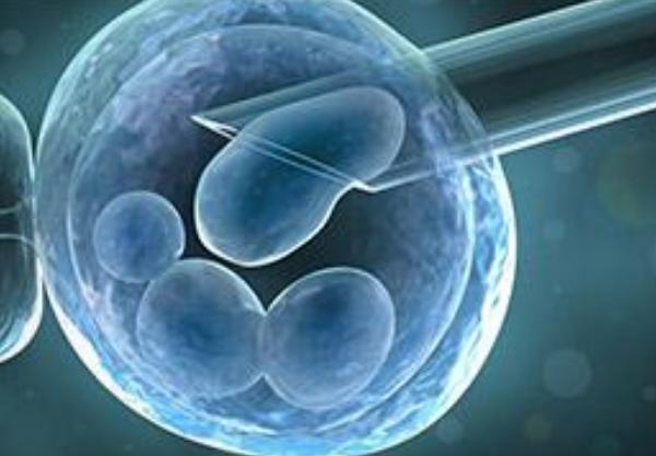 试管婴儿取卵能有性生活吗2018 试管婴儿促排卵过程中可以性生活吗