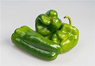 吃青椒会上火吗 青椒是热性还是凉性