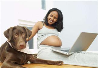 怀孕后生活有哪些改变 怀孕期间需要做什么事
