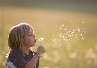 3岁孩子要怎么教育好 尝试社会交往能力的培养