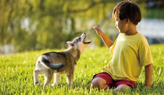 暑假怎么让小孩规律作息2018 暑假怎么培养孩子规律作息习惯