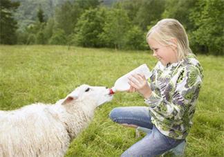 孩子夏天吃冰会怎么样 孩子夏天吃冷的会有什么影响吗