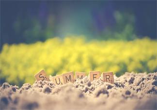 孩子在暑假怎么玩好 孩子可以在暑假开展什么活动