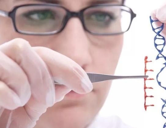 试管婴儿鲜胚移植卵巢体积增大怎么办 鲜胚移植和冻胚移植有什么区别