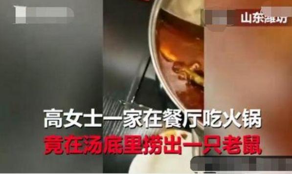 孕妇在呷哺呷哺吃出老鼠怎么回事 孕妇吃火锅吃出老鼠真的吗