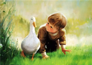 宝宝们眼中的世界是什么样的 宝宝们是如何感知世界的
