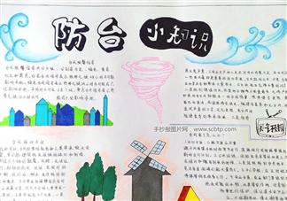 台风主题手抄报怎么写 台风主题手抄报展示2018