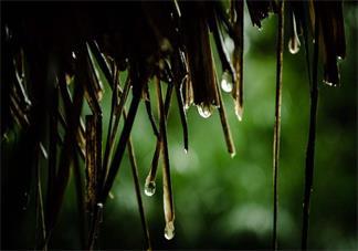 天气凉凉的说说短句 秋天天气凉爽说说朋友圈