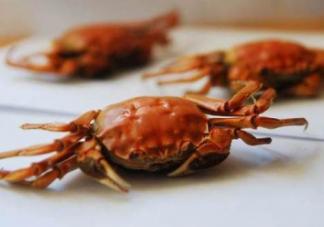 孕妇为什么不能吃螃蟹腿    吃螃蟹腿会流产吗