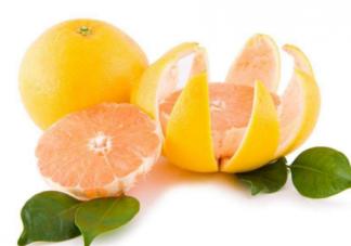 孕妇能吃柚子吗   孕妇吃柚子注意事项