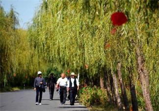 重阳节会放假吗 重阳节的意义是什么