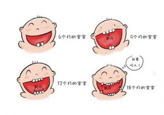 宝宝8个月还没长牙怎么办   8个月没长牙正常吗