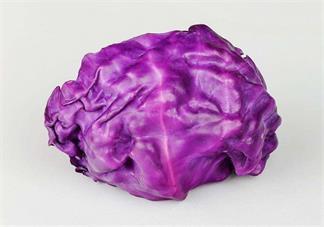 宝宝可以吃紫甘蓝吗 怎么选购适合宝宝吃的紫甘蓝