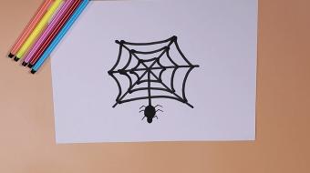 蜘蛛简笔画视频  简单蜘蛛的画法步骤