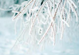 2018立冬朋友圈说说   立冬发什么说说好