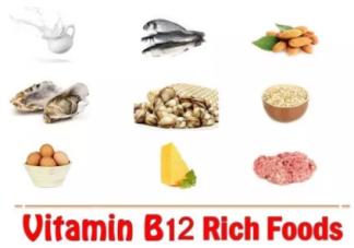 宝宝需要补充维生素B12吗  维生素B12的作用