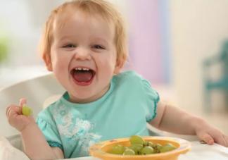 一岁宝宝食谱大全及做法   一岁宝宝辅食吃什么好