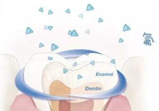宝宝牙齿涂氟会中毒吗   牙齿涂氟剂量介绍
