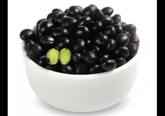 哪些食物补肾快 补肾的食物有哪些