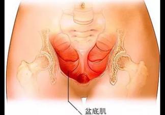 产后盆底肌松弛怎么回事 产后盆底肌松弛的原因