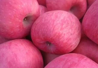 冬至吃什么水果好 冬至水果选择推荐