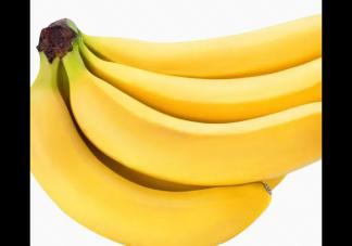 哪些食物可以补脑 补脑的食物食谱推荐