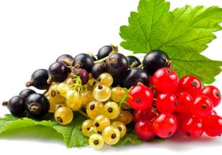冬季宝宝吃水果需要加热吗 冬季水果加热的方法