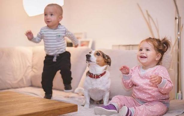 大宝对二宝的态度和什么有关 父母怎么平衡大宝和二宝之间的爱