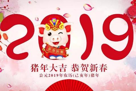 2019猪年新春祝福文案  2019公司新春祝福文案