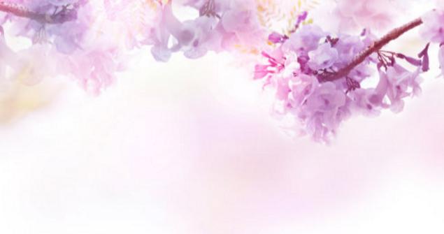 今日女神节朋友圈说说 3月8日女神节说说