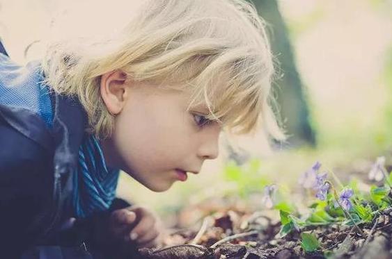 1-3岁孩子适合什么早教内容 适合1-3岁孩子的早教内容