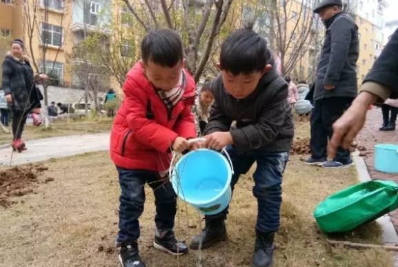 2019幼儿园植树节简讯报道 幼儿园植树节新闻报道